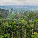 Fotoausstellung über den Kongo