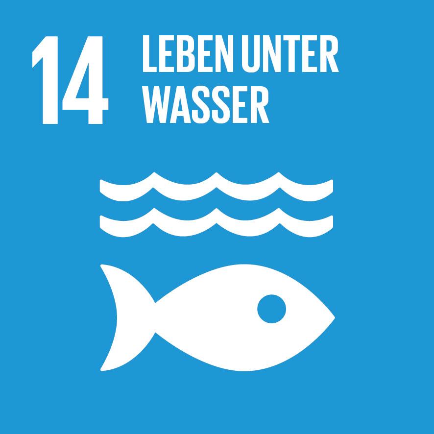 SDG-icon-DE-14