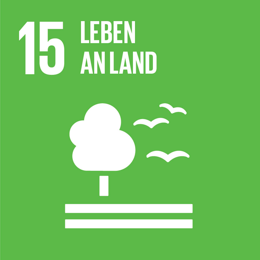 SDG-icon-DE-15